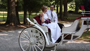 tennessee outdoor wedding carriage